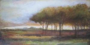 Serene-Meadow